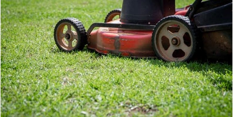 Why is lawn care and maintenance crucial